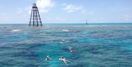 Snorkeling in Key West