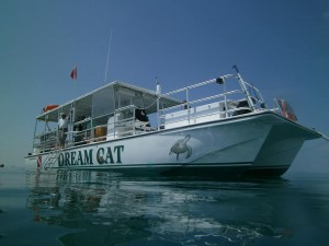dreamcat2 300x225 - Private Key West Charter